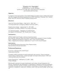 What To Write In A Objective For A Resume Professional Objectives
