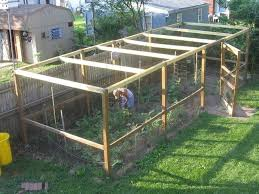 garden enclosure. Garden Enclosure To Keep Out Squirrels - Google Search X