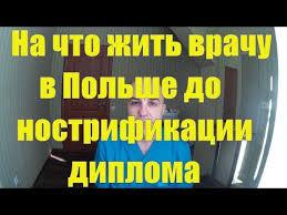 Доктор в Польше Как подтвердить диплом медика врача  На что и как жить врачу до подтверждения диплома в Польше