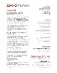 Best Of Online Marketing Specialist Sample Resume Resume Sample