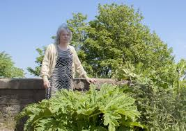 Fight to eradicate hogweed in Fife village | Fife Today