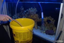 A Simple Reef Aquarium Maintenance Schedule