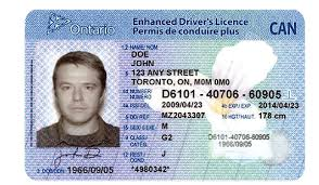 – Drivers Scene License Canadian Reliable