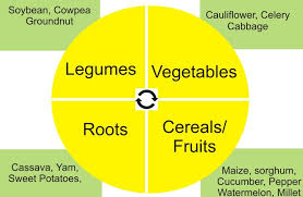 Crop Rotation Chart Use The Principles Of Crop Rotation To Control Crop Pests