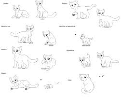 Small Picture Black Star Warrior Cats Coloring Pages Coloring Pages For All