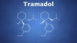 Tramadol The Drug Classroom