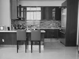 Modern Kitchen Dark Cabinets Furniture Divine Paint Kitchen Shenandoah Cabinets With Kitchen
