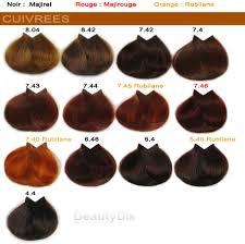Coloration Cheveux Inoa Nuancier