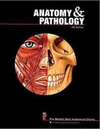 Anatomy And Pathology Anatomical Chart Company 9780781773560