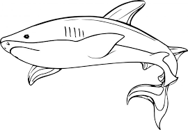 Small Picture Coloring Pages Animals Underwater Shark Coloring Page Shark