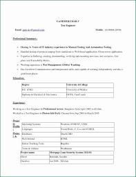 Resume Template Download Free Microsoft Word Resume Template Download Free Microsoft Word 24 Elegant Resume Free 10