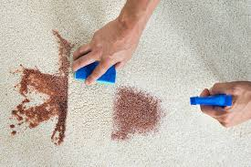Removing ink stain from carpet Ballpoint Pen How To Clean Red Wine And Coffee Stains Erictsangco How To Clean Every Kind Of Carpet Stain Yell Home Garden
