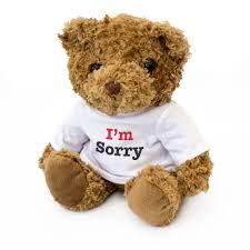 i m sorry teddy bear