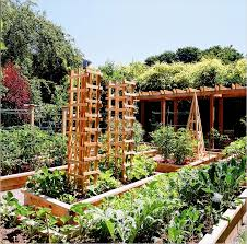 most beautiful vegetable gardens 23