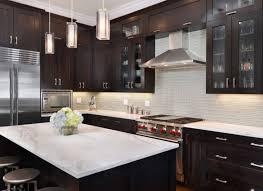 Clear Glass Backsplash Kitchen Design Ideas Dark Cabinets Clear Glass Vase Flower Pink