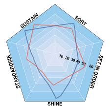 5s Radar Chart Template Spider Diagram Defined Creative Safety Supply