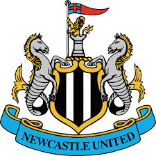 Image result for NEWCASTLE logo