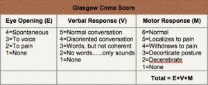 An Easy Trick For Remember The Glasgow Coma Scale Life
