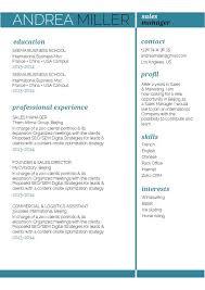 Best Professional Cv Format Cv Format Agility Resume Mycvfactory