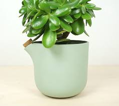 This Flower Pot Tells When It Needs Water