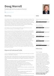 Vice President Resume Samples Executive Vice President Resume Samples Templates Visualcv