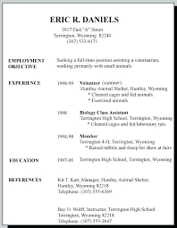 How To Make A Resume With No Work Experience Delectable New Teenage Resume Template No Work Experience 48