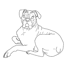 Printable Boxer Dog Coloring Pages Colouring