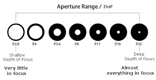 Aperture Value Chart Are You On Aperture Priority Rahul Sachdev Photography
