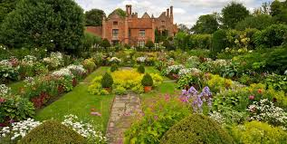 garden planting. english garden design ideas planting
