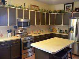 Kitchen Cabinet Color Schemes Color Combos For Kitchen Cabinets Amazing Bedroom Living Room