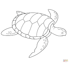 Small Picture Sea Turtle coloring page Free Printable Coloring Pages