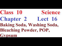 cl 10 chapter 2 lect 16 topic