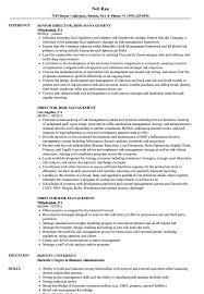 Director Risk Management Resume Samples Velvet Jobs
