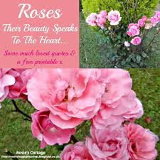 Quotes About Roses And Beauty Best of Rosie's Cottage Roses Much Loved Quotes Free Printable