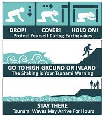 Скачайте векторную иллюстрацию set of safety warning signs and symbols of tsunami disaster tsunami warning signs help people to understand and easily recognize when the. Redwood Coast Tsunami Work Group