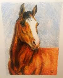 horse drawing in color. Exellent Drawing Iu0027m Not The Best Artist But Pretty Happy With How This One Turned Out  Mostly Because I Managed To Fuck Up Eyes Timejust Thought Iu0027d  On Horse Drawing In Color W