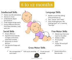 8 Month Old Baby Development Chart Twin Babies Development Milestones 6 To 12 Months