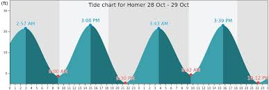 Homer Tide Times Tides Forecast Fishing Time And Tide