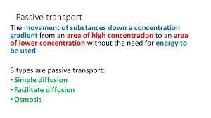 3 Types Of Passive Transport