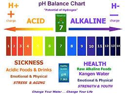 Kangen Water For Healthy Hair And Skin Kangen Water
