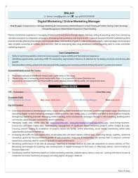 Sample Resume Objectives Entry Level Marketing Examples For