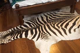 8 10 zebra hide rug
