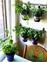 indoor gardening supplies. Indoor Gardening Supplies Near Me Elegant 52 Best Images On Pinterest