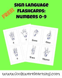 Flashcard Template Free Printable Flash Card Template Wiini Co