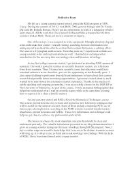 Essay Examples Pdf Essay Writing Format Essay Example Examples Of