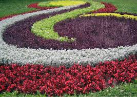 small flower garden plans layouts best images about on bed