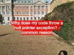 why does my code throw a null pointer
