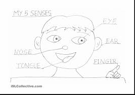 extraordinary worksheet five senses coloring pages with pre k ...