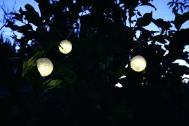 outdoor globe string lights costco. full size of patio lights string costco loving the lighted at oddfellows cafe in outdoor globe