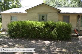 Image result for boxwood along foundation